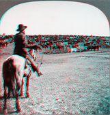 Cowboy cattle ranch Kansas — Foto Stock