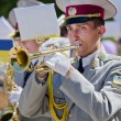 Military brass band. A man playing the trumpet — Stock Photo