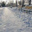 Footprints in the snow in the park — Stock Photo