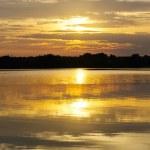 Sunrise over the river — Stock Photo #39645833
