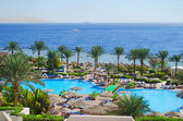 Egypt, Red Sea. Landscaping. Sharm el-Sheikh. — Stock Photo