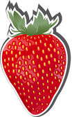 Strawberry Fruit Icon. — Stock Vector