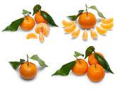 タンジェリンの果物. — ストック写真