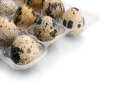 Quail eggs. — Foto de Stock