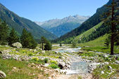 Caucasus mountains, river — Stock Photo