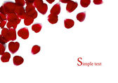 Frame made of rose petals — Stock Photo