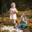 Children with leaves and apples — Stock Photo