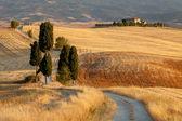 Toskanische landschaft bei sonnenuntergang, in der nähe von pienza, toskana, italien — Stockfoto