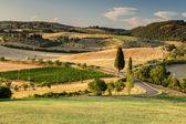 Tuscan country near Pienza, Tuscany, Italy — Stock Photo