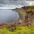 Cliffs near Kilt rock waterfall, Isle Of Skye, Scotland, UK — Stock Photo