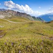 View on Carinthian Alps from Grossglockner Hohalpenstrasse, Aust - Stock Photo