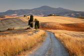 Tuscan countryside at sunset, near Pienza, Tuscany, Italy — Stock Photo