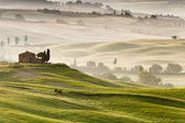 Early morning in Tuscany, Italy — Stockfoto