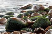 Pebbles on the beach — Stock Photo