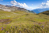 View on Carinthian Alps from Grossglockner Hohalpenstrasse, Aust — Stock Photo