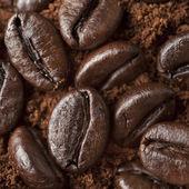 Closeup coffee beans at roasted coffee heap. Coffee bean on macr — Stock Photo