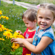 Stock Photo: Kids sniffing flowers