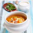 Russian traditional cabbage soup - shchi — Stock Photo