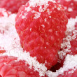 Sweet raspberry - Stock Photo