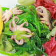Kaiso with octopus — Stock Photo