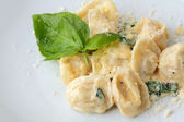 Ravioli close up — Stock fotografie