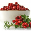 Cowberry — Stock Photo #31644843