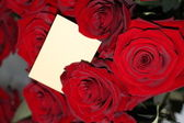 Red roses with a blank gift tag. — Stock Photo