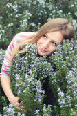Girl in the field of rosemary — Stock Photo