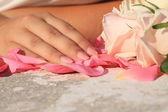 Mãos com uma boa manicure mentindo sobre rosas — Foto Stock