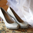 Stock Photo: Silver shoes