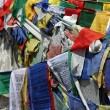 Stock Photo: buddhist praying flag from rothang pass
