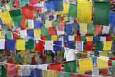 Buddhist tibetn flags for background — Stock Photo