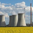Coolin tower and chimney of coal power plant over yellow field — Stock Photo #17665905