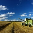 Machinery working o the agriculture field - Stock Photo