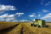 Machinery working o the agriculture field — Stock Photo