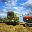Stock Photo: Harvest machine loading seeds