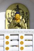 Buddha statue in leh — Stock Photo