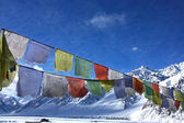Buddhist praying flags in winter himalayas — Stock Photo