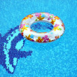 Swimming ring od the water and dolphin — Stock Photo
