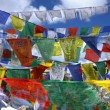 Tibetan holy flags with mantras - Stock Photo