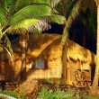 Stock Photo: Luxury hut under coconut palms in goa