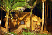 Luxury hut under coconut palms in goa — Stock Photo