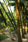 Hammock under coconut palm trees in Goa — Stock Photo