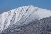 Detail of the highest mountain of Czech republic during winter — Stock Photo