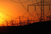 Forest of transmission towers over horizon during sunset — Stock Photo