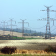 High voltage transmission towers in line — Stock Photo