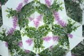Natural kaleidoscope — Stock Photo