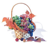Basket with grapes — Stock Photo