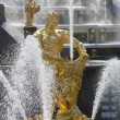Samson statue in the fountain of Peterhof — Stock Photo
