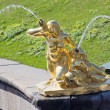 Statue fountain in Peterhof — Stock Photo